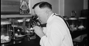 Dr. Charles Armstrong, Public Health Surgeon and Specialist on virus diseases, photographed in the laboratory in D.C., 1935. From Library of Congress.